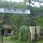 Pusat Pembibitan Kambing Etawa
