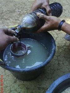 kambing etawa minuman